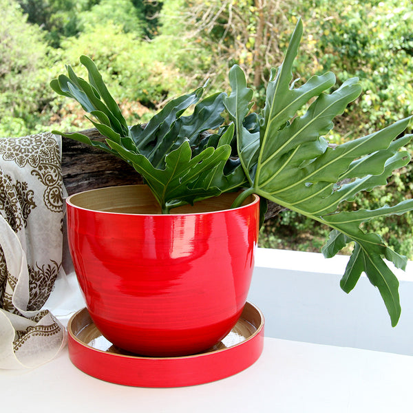 Red Bamboo Bowl