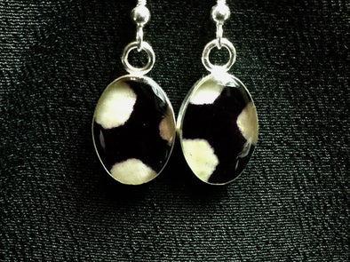 Sterling Silver Earrings 116