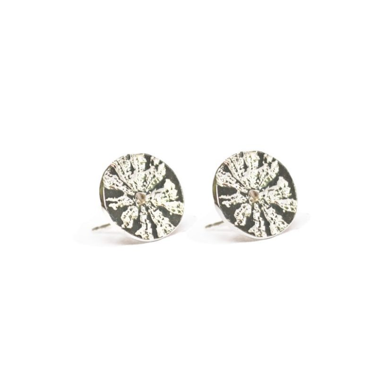 LIMPET STAR SHELL POST EARRINGS - Multiple Metal Options