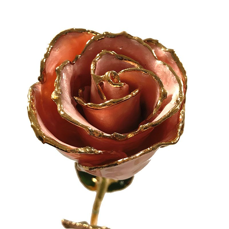 Forever roses, real roses preserved in lacquer and dipped in real gold.