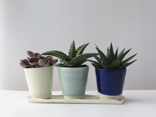 Set of three planters