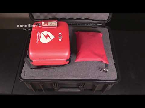 "Load and play video in Gallery viewer, interior of the 20"" Large Container Hard Case #253 waterproof hard case"