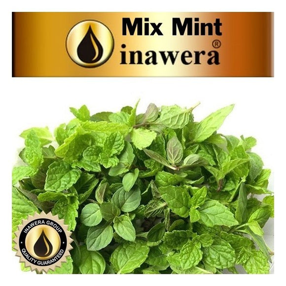INW - MINT MIX CONCENTRATE