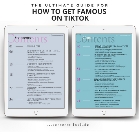 How To Get Famous On TikTok - Contents Page