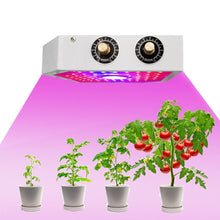 Load image into Gallery viewer, ERICDU Positive Bevel LED Plant Growth Light (5871150661788)