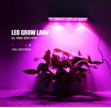 Load image into Gallery viewer, LED Indoor 25/45W Herbal Lamp Greenhouse Full Spectrum Plant Growth Lamp (6027315708060)
