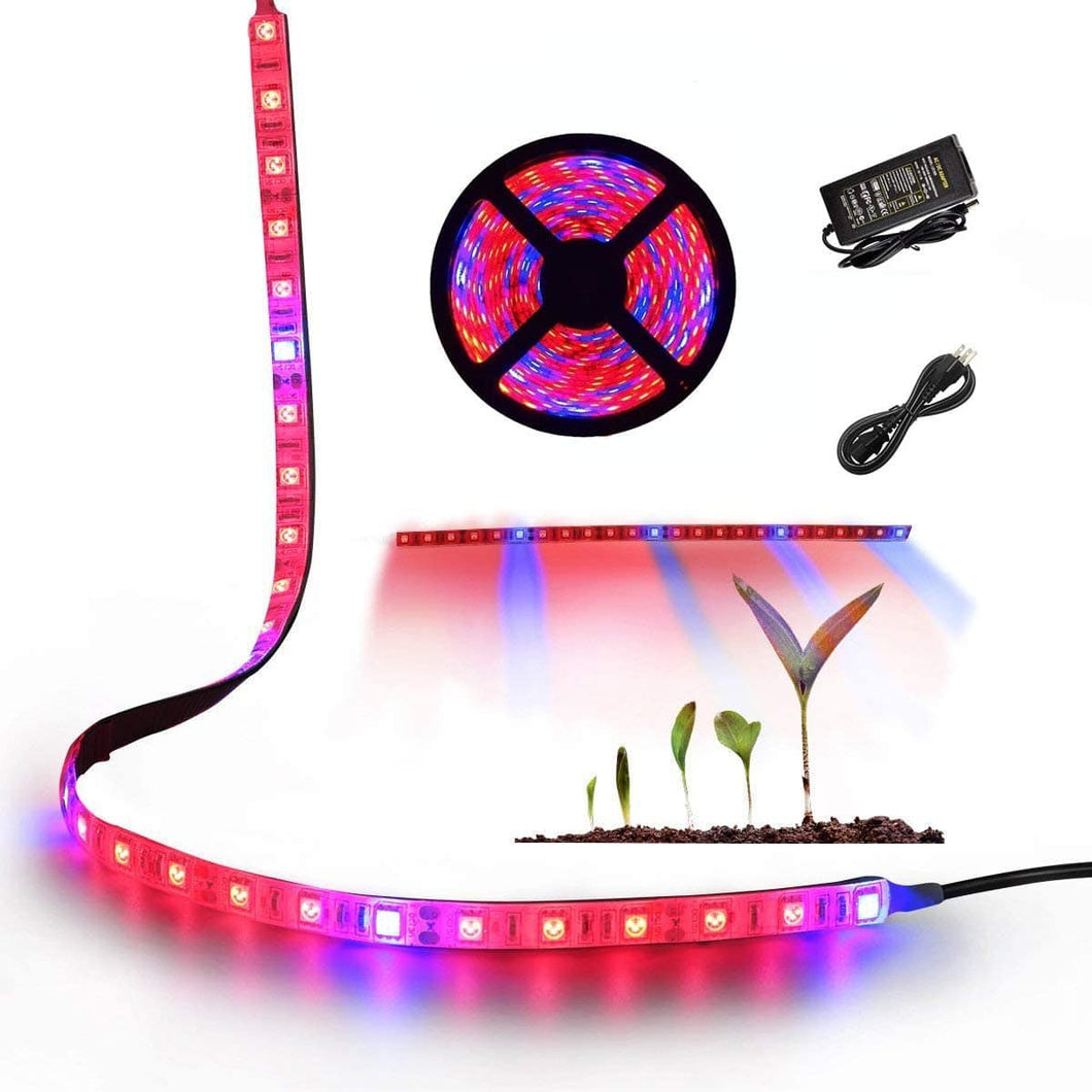 Plant Grow Light Strip AveyLum 5050 SMD LED Plant Strip Lights Indoor Growing Lamp 16.4ft Waterproof Flexible Soft Rope Light with 12V Adapter for Greenhouse Hydroponics Flower Seeds(Red Blue 4:1) (6031933702300)