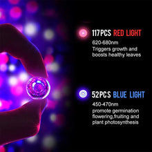 Load image into Gallery viewer, LED Grow Lights for Indoor Plants, 75w Plant Lights with Red & Blue Spectrum Grow Lamp for Hydroponic, Seedling, Succulents, Veg and Flower (2 Packs) (6032498426012)