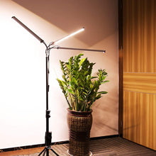 Load image into Gallery viewer, LED Grow Light with Timer Plant Light Full Spectrum with Stand for Indoor Plants ,Tri Head Growing Lamp for seedlings Adjustable 37-79 in, 6/12/16H Timer & 3 Modes (6063782166684)