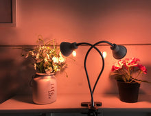 Load image into Gallery viewer, 14W LED Grow Light, New Dual Head Desk Clip Lamp Warm White Light with Swivel 360 Degree Adjustable Gooseneck and One Switch,  Warmwhite Comfortable Light for Indoor Plants at Home and Office (6063736160412)