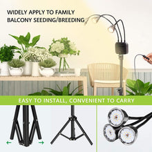 Load image into Gallery viewer, Tri-Head 60W LED Grow Lights with Stand, Adjustable Tripod 15-47inch, Full Spectrum Plant Lamp with Cycle Timer for Indoor Plants, Timing 3/9/12H (6063697789084)