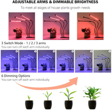 Load image into Gallery viewer, Grow Lights Plant Light for Indoor Plants Seed Starting Growing Lamps Seedling Bulb for Succulents Full Spectrum (6032024535196)