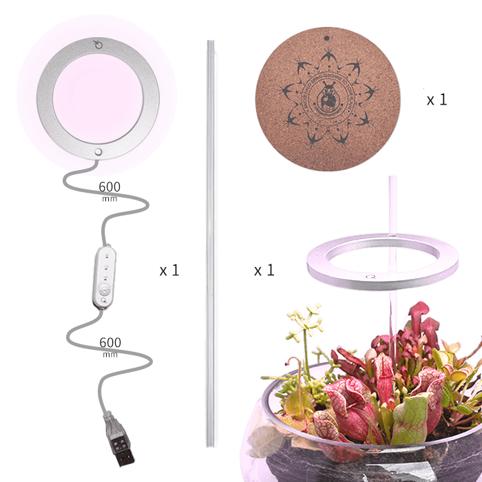 LED Indoor Full Spectrum  Imitating Sun/White Linght 1/2/3 Head Usb Timing Switch Succulent Plant Growth Light (6029307576476)