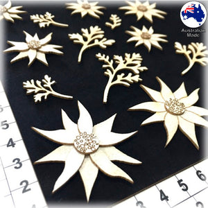 CB5146 Flannel Flowers 01