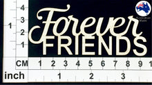 Load image into Gallery viewer, CT051 Forever Friends