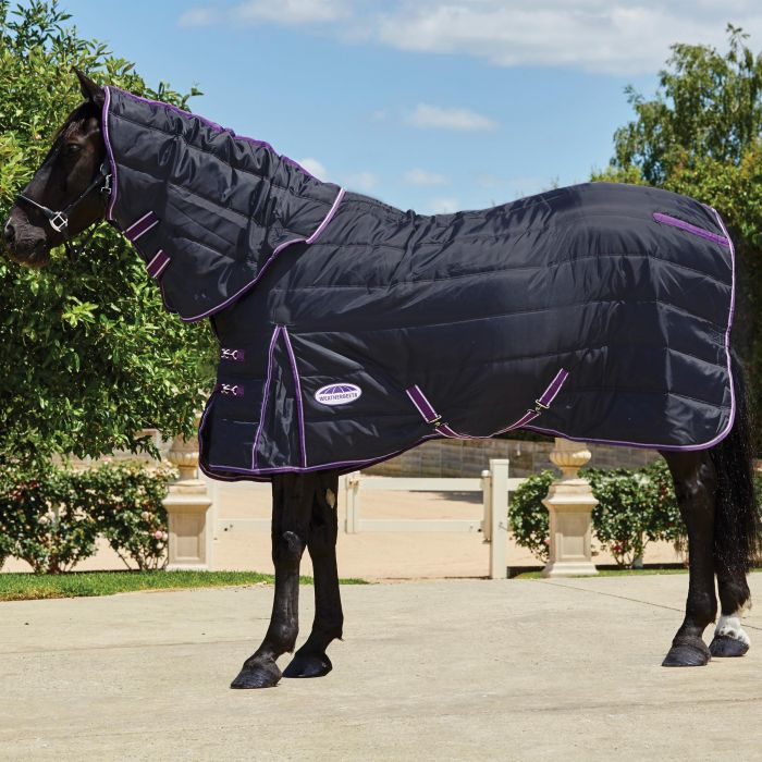 Weatherbeeta Comfitec Channel Quilt Detach-A-Neck Medium Black/Purple | Country Ways