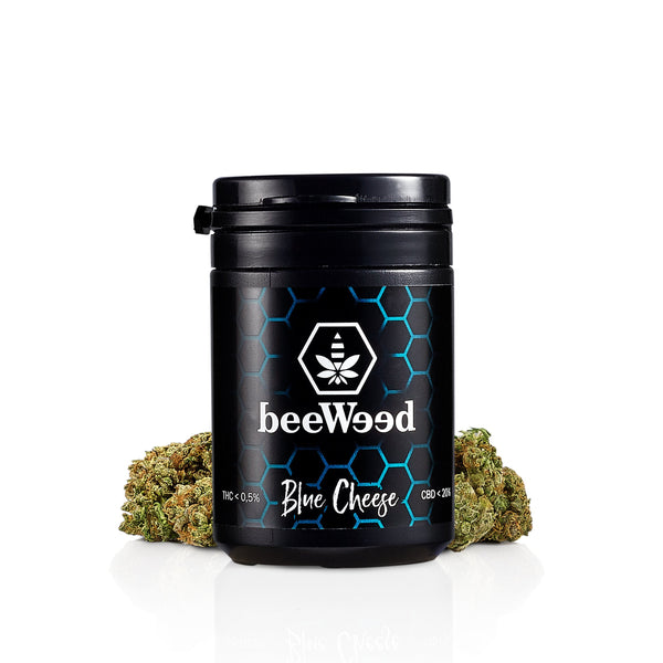 Blue Cheese - Cannabis Light Legale - bee-weed