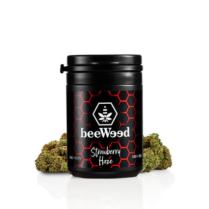 Strawberry Haze - Cannabis light Legale - bee-weed