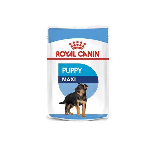 Royal Canin Maxi Puppy in Gravy