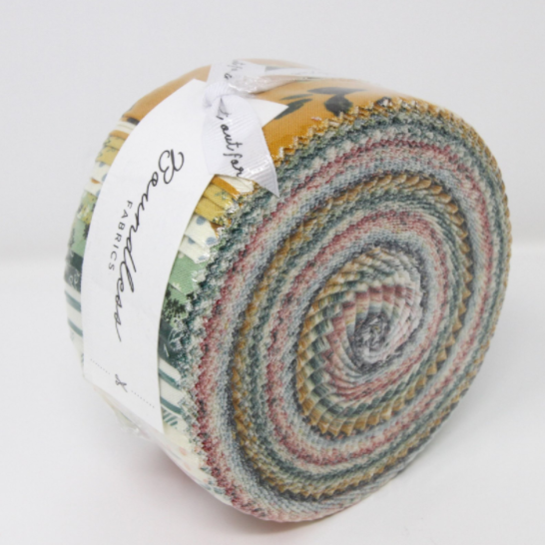 2 1/2 inch strips of Boundless fabric. Jelly roll