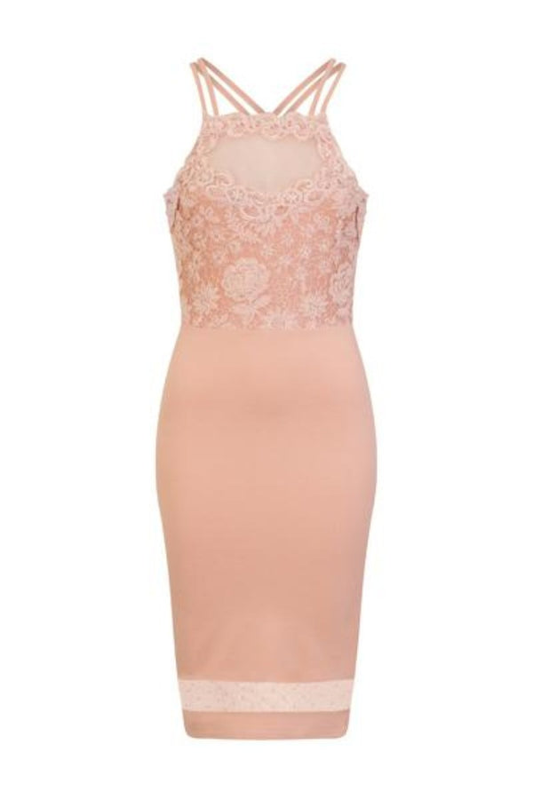 Kara Nude Floral Lace Bodice Mesh Bodycon Midi Dress