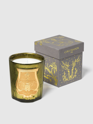 CIRE TRUDON Gabriel Holiday