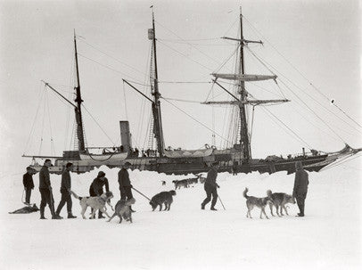 Dogs and men on ice, with Endurance behind