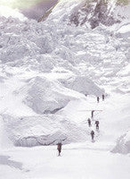 Porters including one carrying a tree trunk approach the icefall