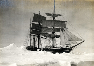 The Terra Nova held up in the pack - ice point in the foreground