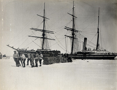 Officers hauling sledges of fodder from the Terra Nova to Cape Evans