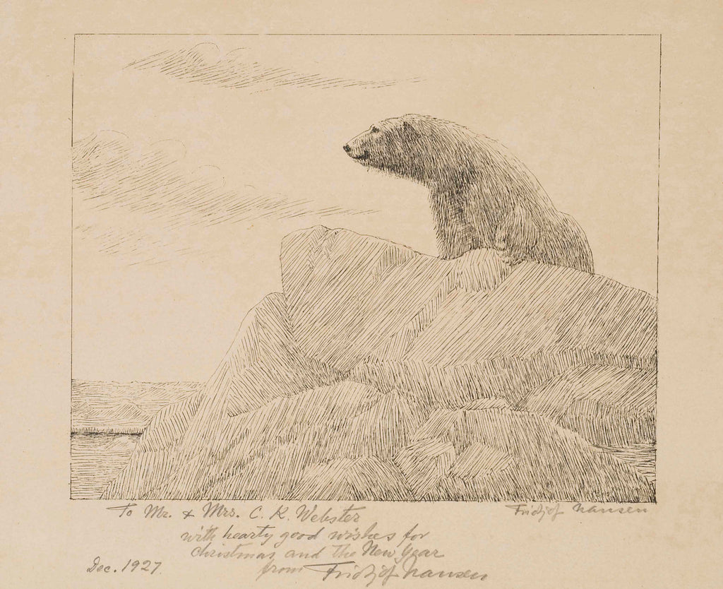 Sketch of a polar bear