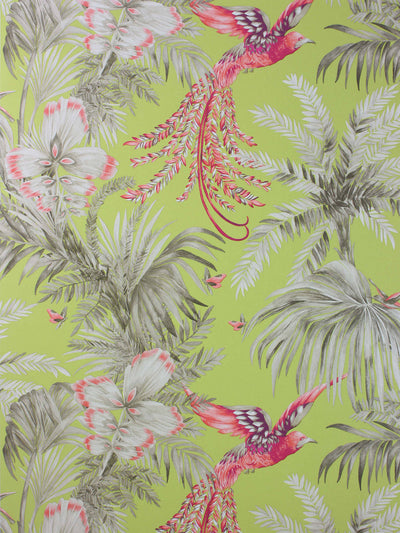 Pink birds of paradise flying through the trees in a jungle. The wallpaper has a citrus yellow ground.