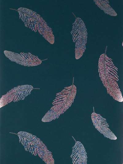 Matthew Williamson Wallpaper.  Jewel like feathers shimmer purple, blue and pink against a dark background.