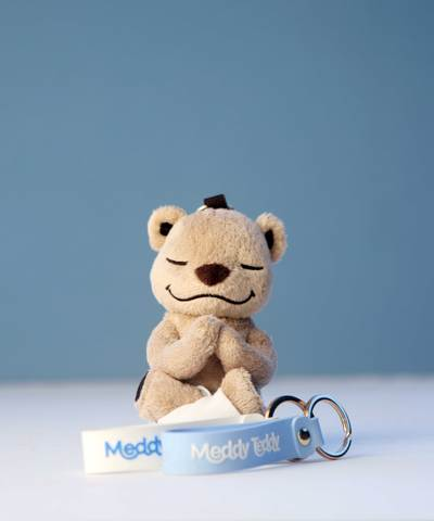 Meddy Teddy Key Chain