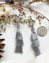 Load image into Gallery viewer, Night Owl Earrings