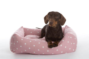 In Vogue Dotty Rose Bolster Bed