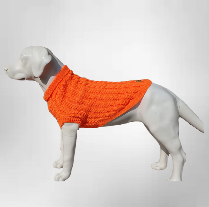 Canine and Co The Gelert Dog Jumper in Orange