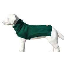 Load image into Gallery viewer, Canine and Co The Jazz Dog Jumper in Green