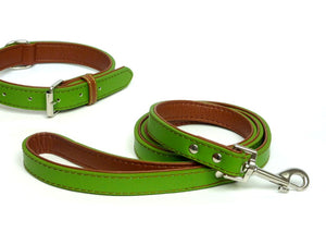 The Paws Fusion Premium Leather Lead