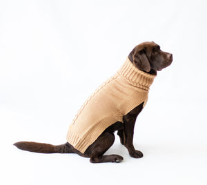 Canine and Co The Jazz Dog Jumper in Camel