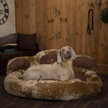 Load image into Gallery viewer, Scruffs Grizzly/Teddy Bear Dog Bed