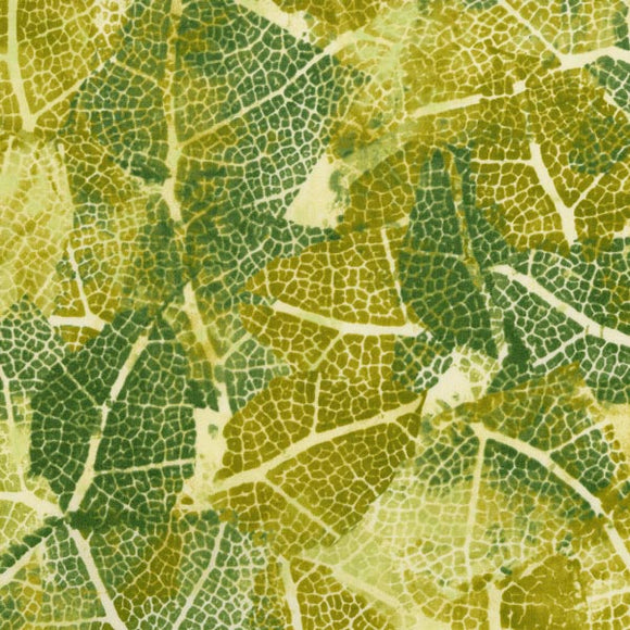 Leaf Study - Sprout Green
