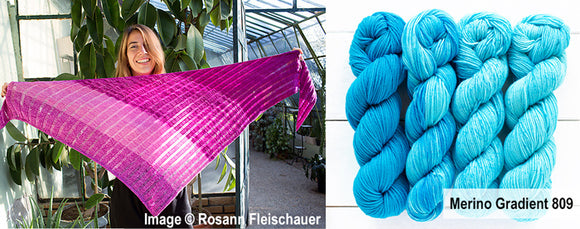 Merino Gradient Kit 809