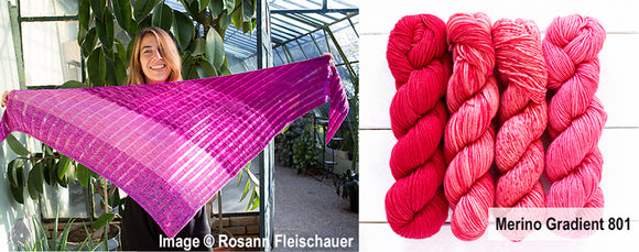 Merino Gradient Kit 801