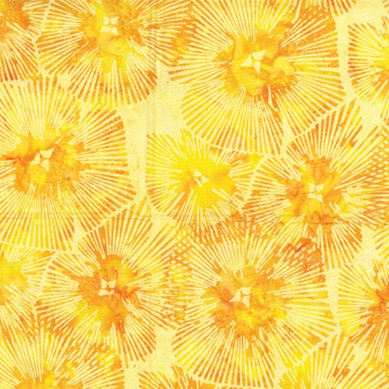 Abstract Floral - Sun