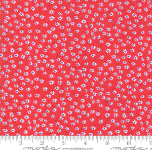 Back Porch Country Red Blue Dot Flowers Me and My Sister Designs Moda Fabrics