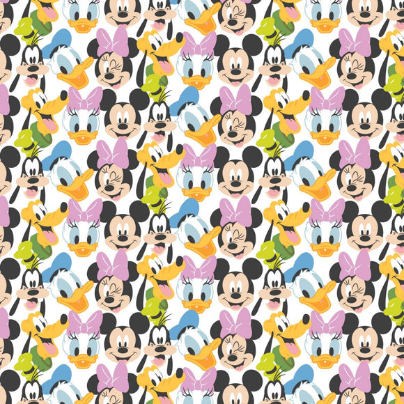 Disney Mickey Mouse and Friends