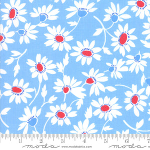 Back Porch Sky Blue Flowers Me and My Sister Designs Moda Fabrics
