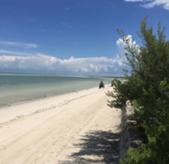 "Huge Sale on the Holbox ""The clouds"" with a spectacular beachfront view - Shirt King Shop"