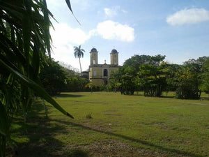 An Amazing Opportunity To Invest in  a Piece of Yucatan History at a very nice price - Hacienda San Jose - This listing has been translated into English, Spanish, Russian, French, German and